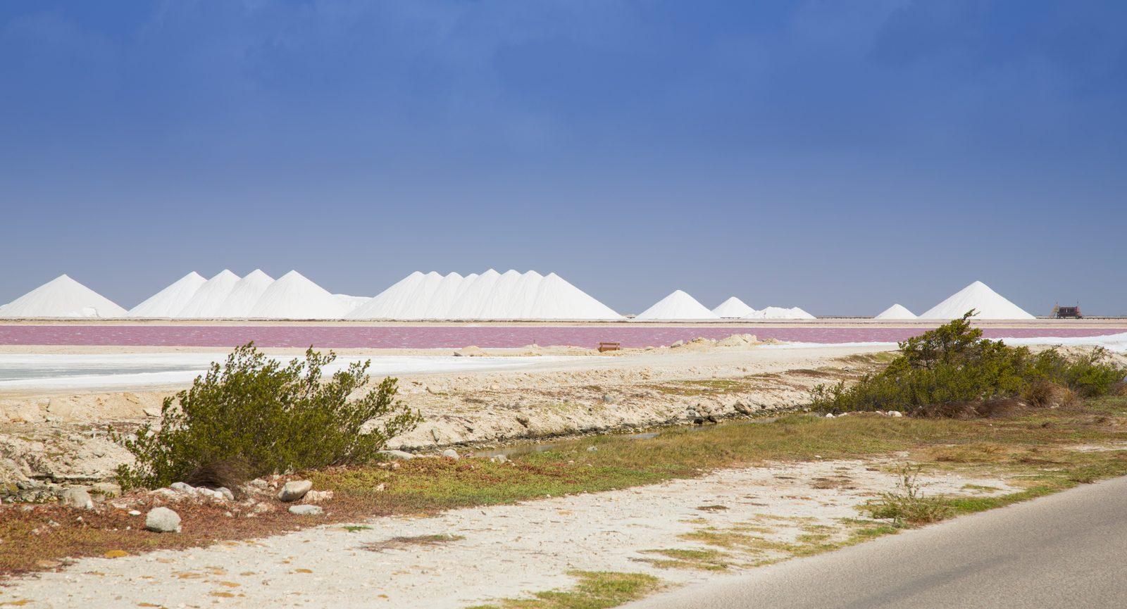 Planícies de sal
