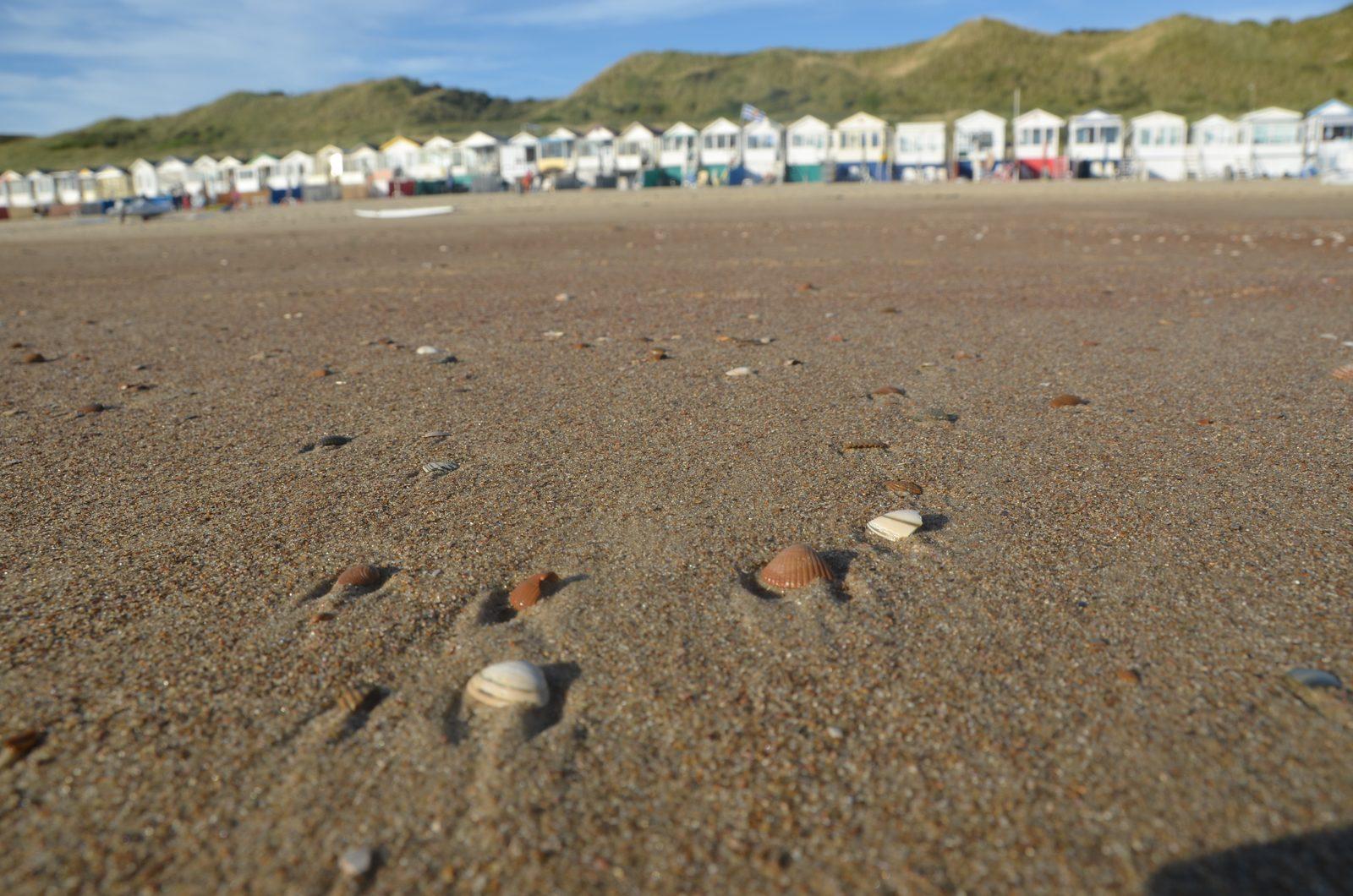 strand met huisjes