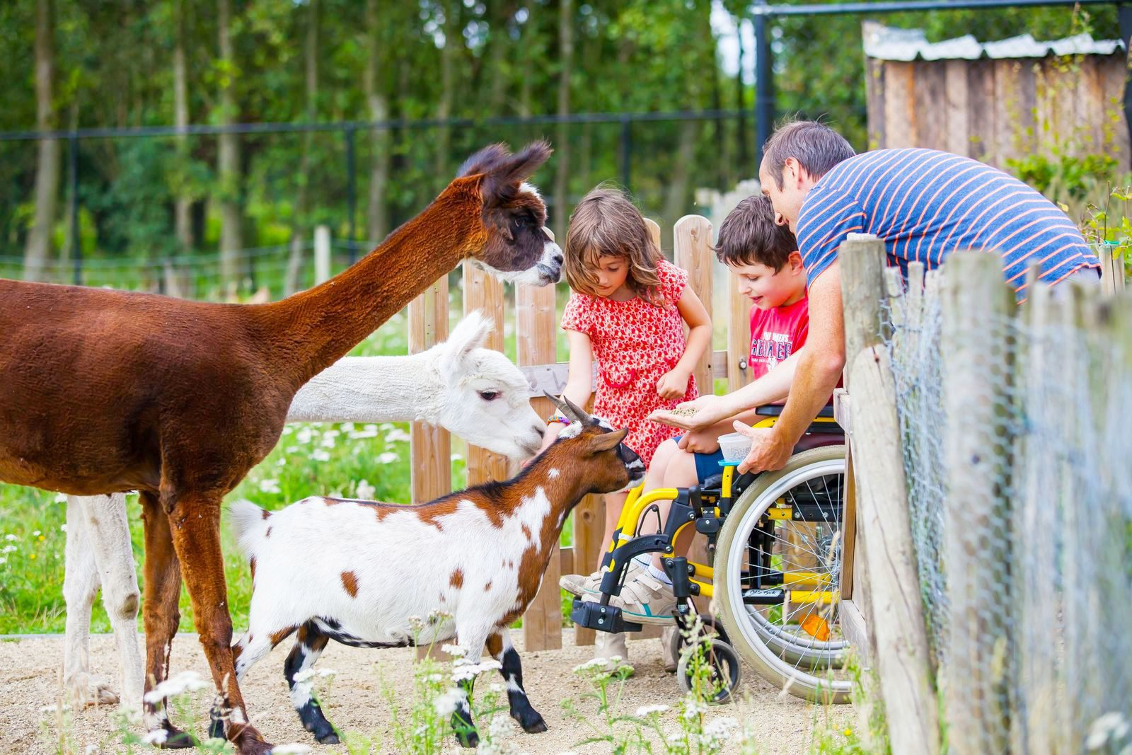 Behindertengerechte Unterkünfte