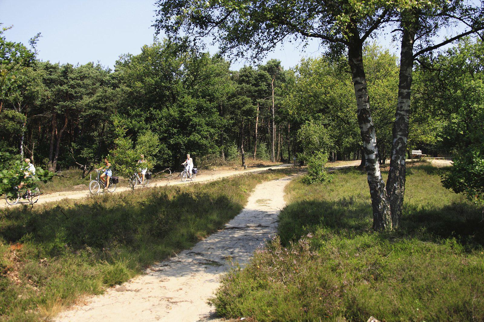 Ferienpark Twente