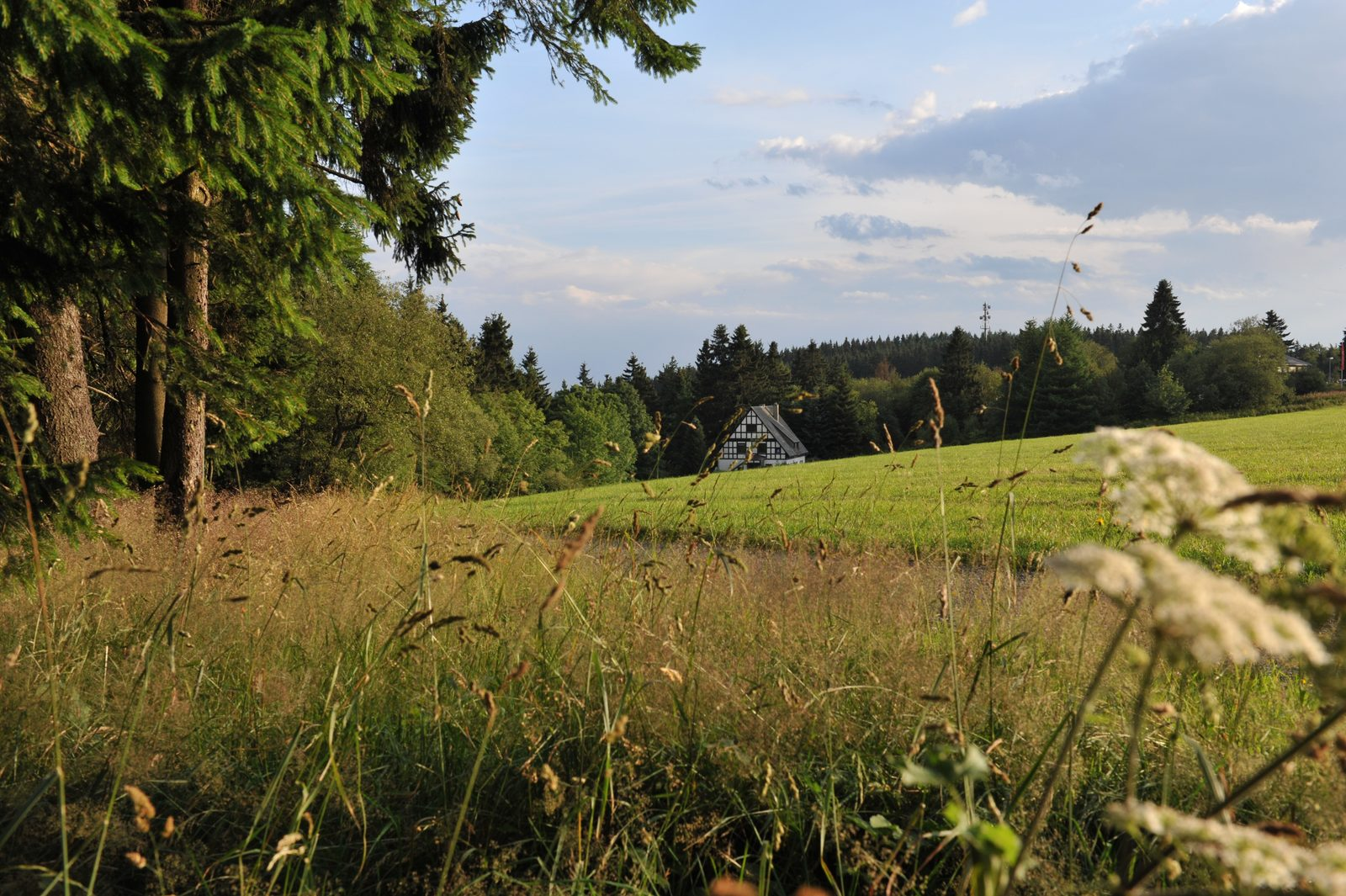 Luxe vakantiehuis in Duitsland