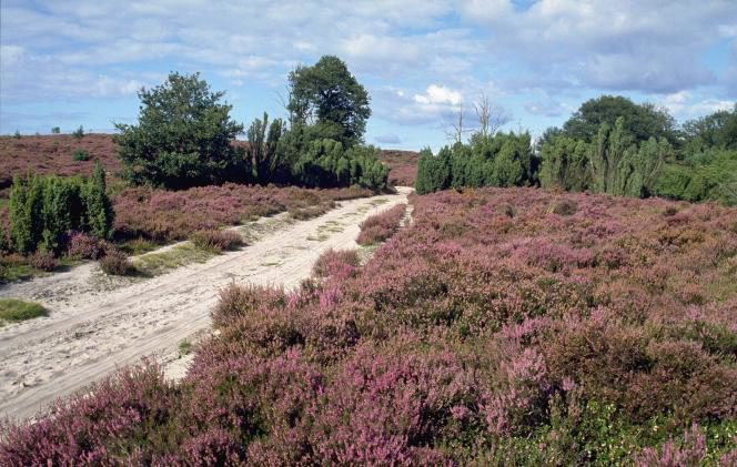 Tips from Anita van Schooten - Tourist Information Hellendoorn