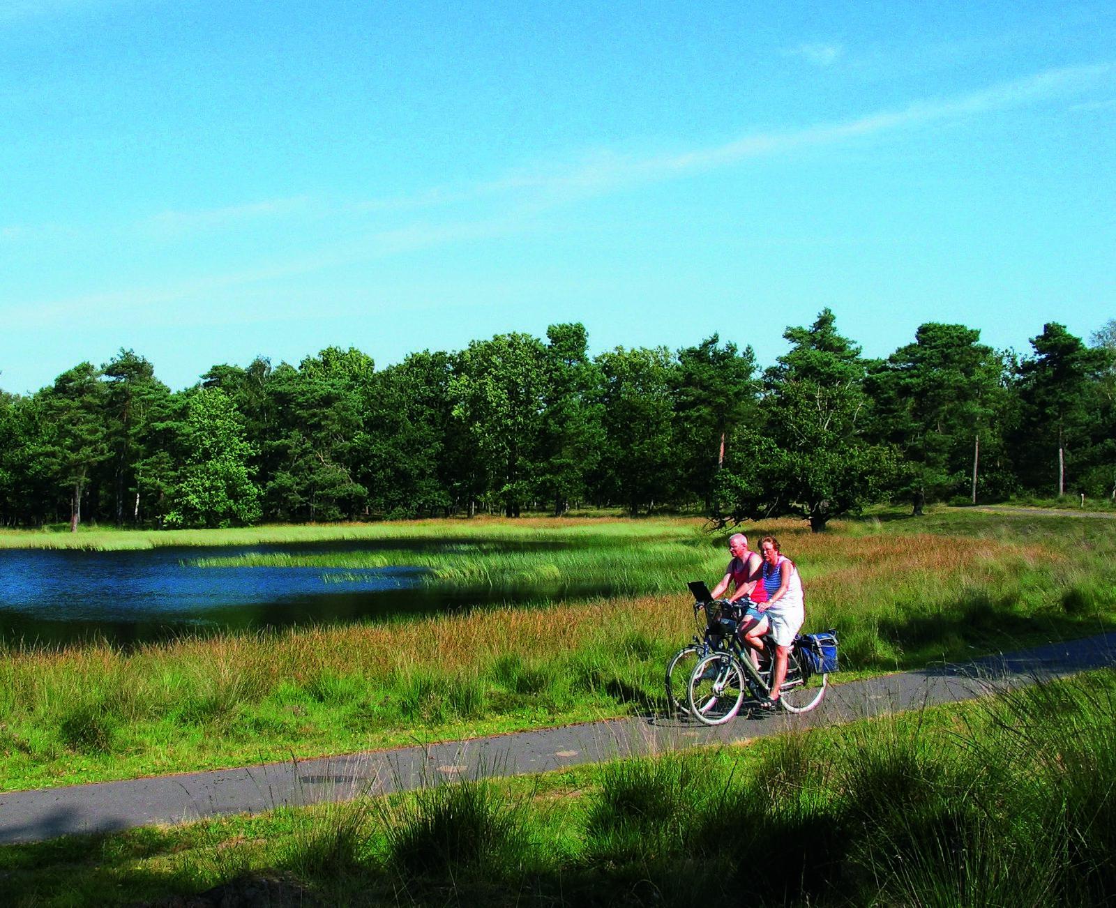 Recreatiewoningen in Rijssen   Prachtige omgeving in Overijssel