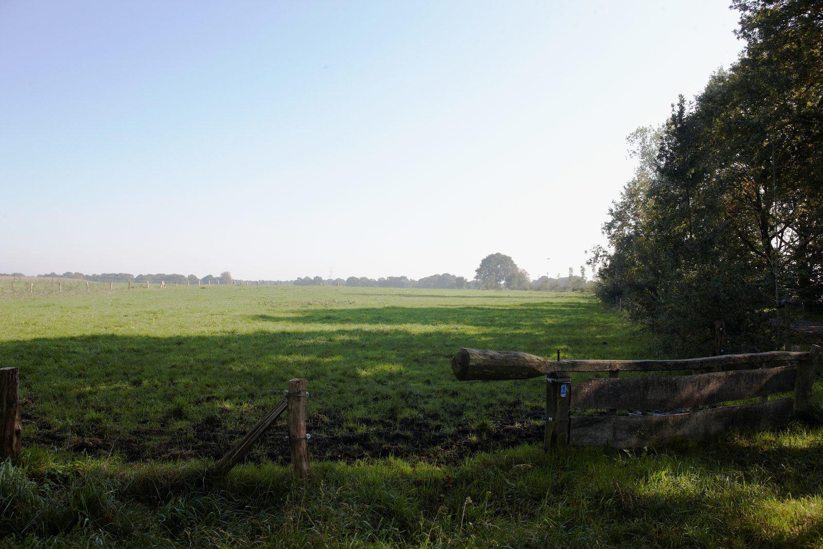 Genieten van de natuur tijdens de vakantie in Overijssel
