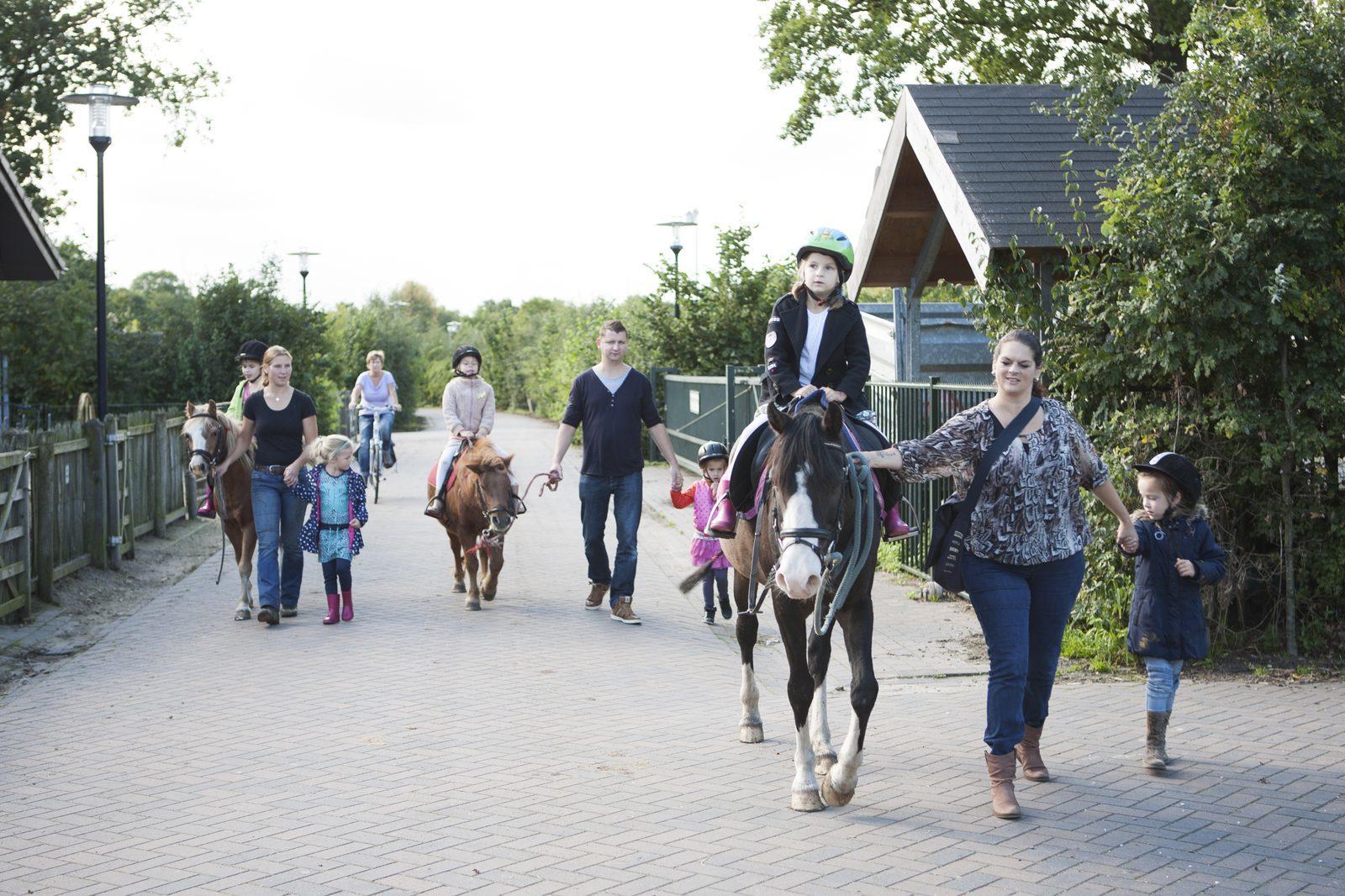 Children's pony party in Voorthuizen at Holiday Park De Boshoek