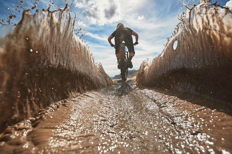 Trek Bike Arrangement