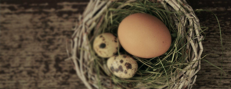 Vier Pasen op de Veluwe