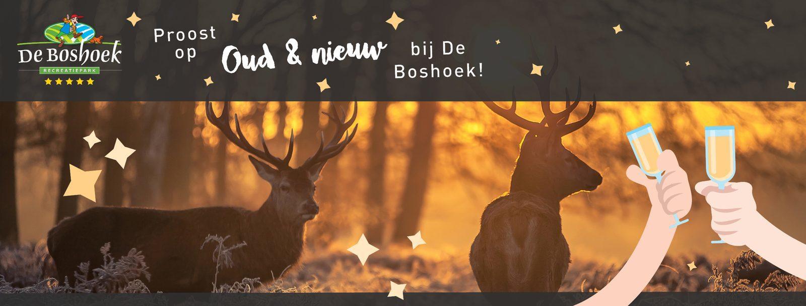 Vier Oud & Nieuw op De Boshoek op de Veluwe