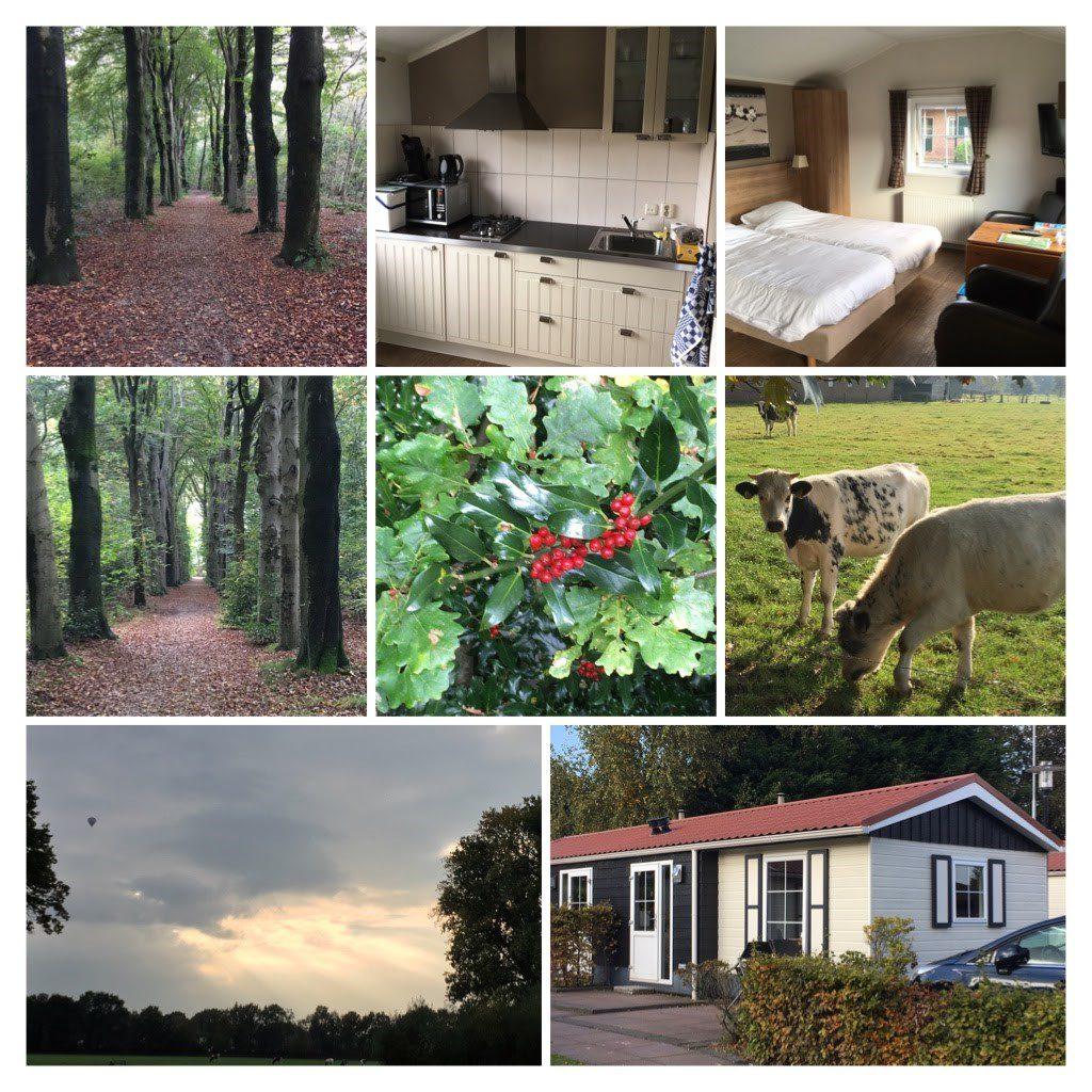 Gewonnen vakantie op de Veluwe bij Recreatiepark De Boshoek in Voorthuizen