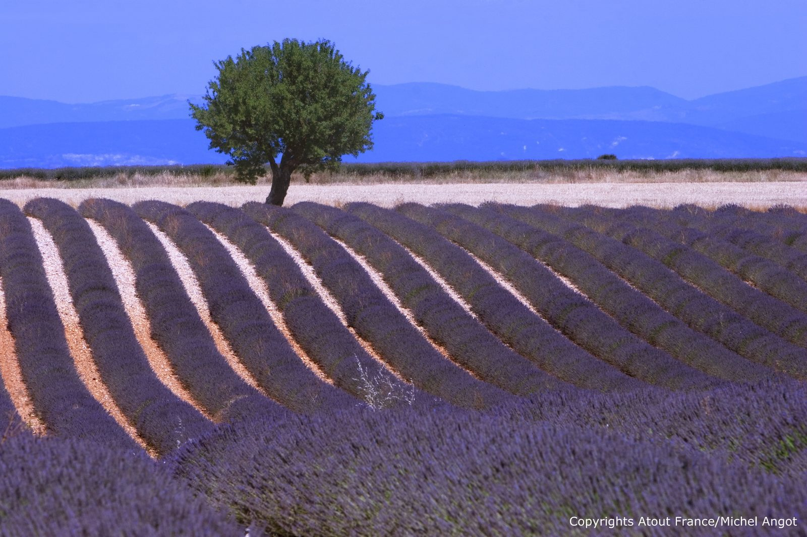 Top 5 vakantievilla's in de Provence