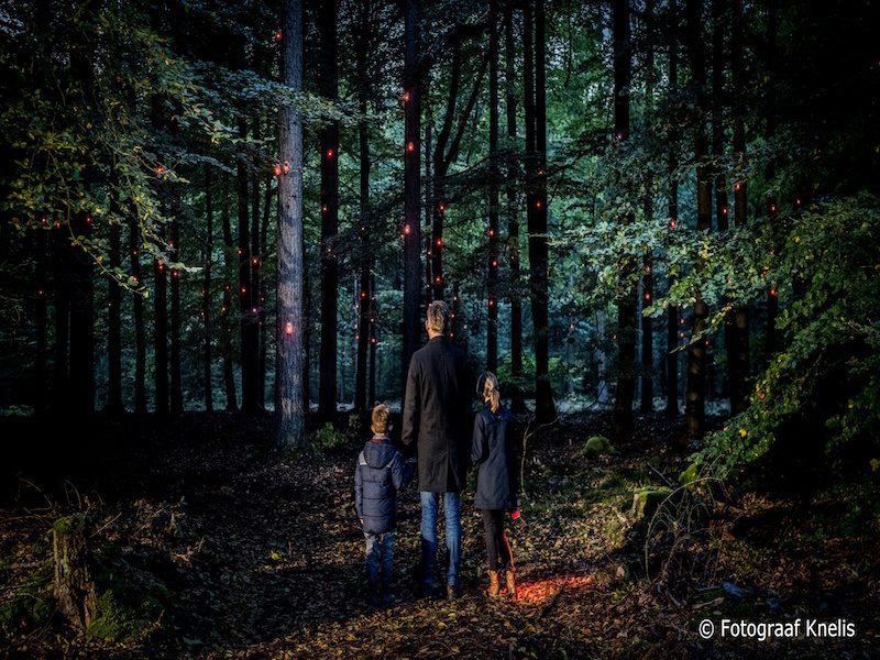 Pixipad, Drenthe, staatsbosbeheer, boomkroonpad, decembermaand, weekendje weg