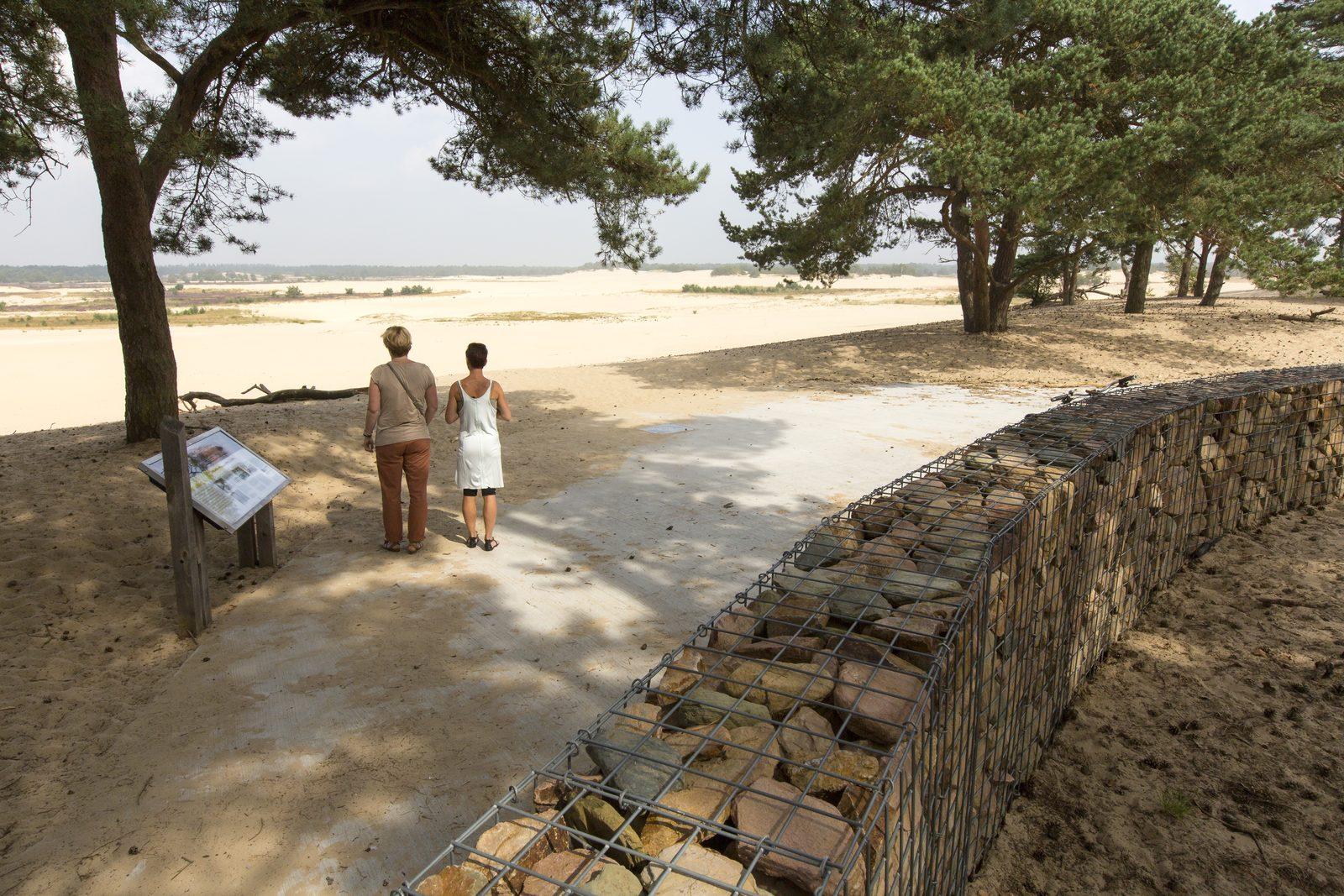 Dunes of Loon and Drunen
