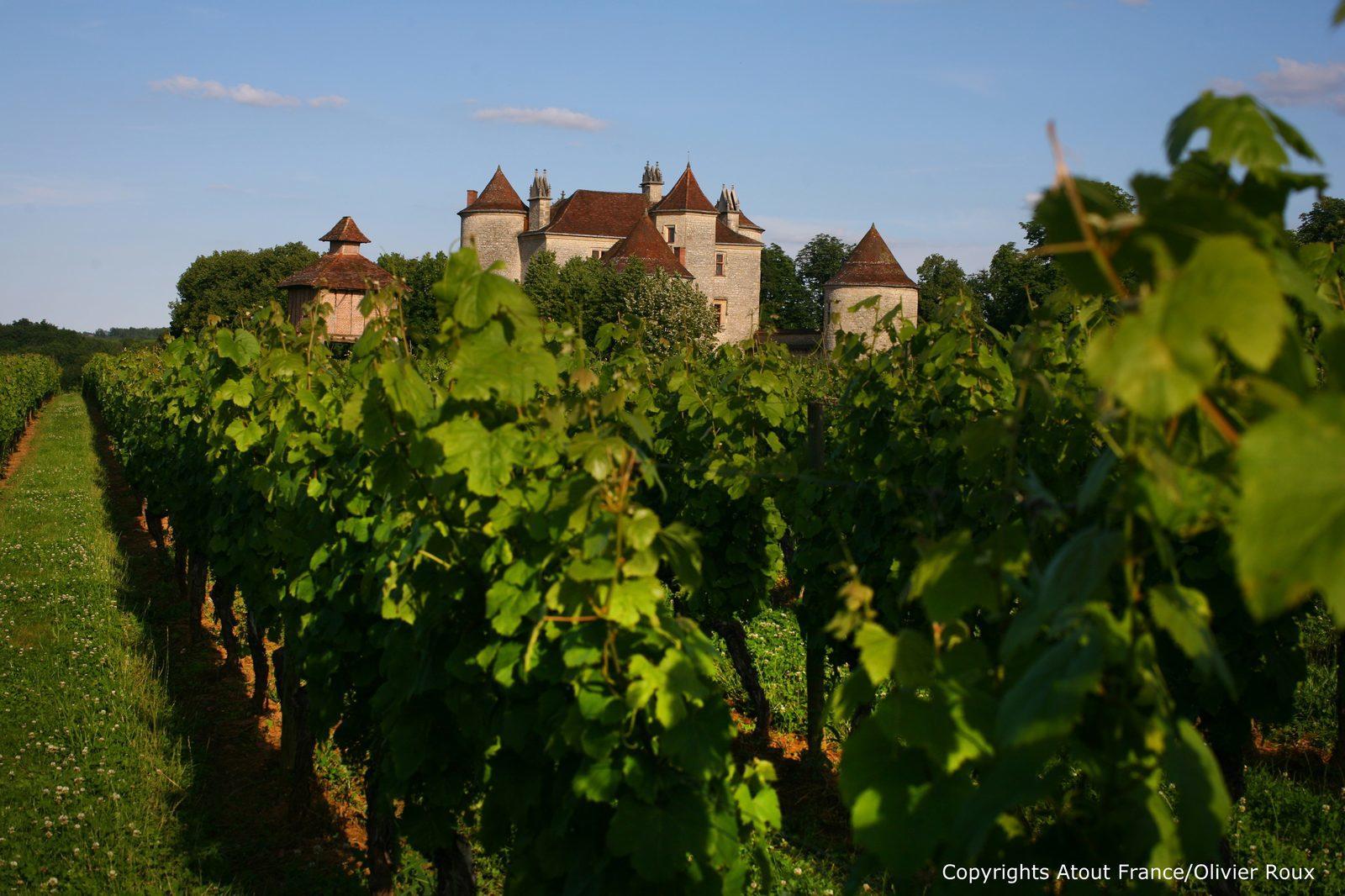 wijn proeven in de Dordogne