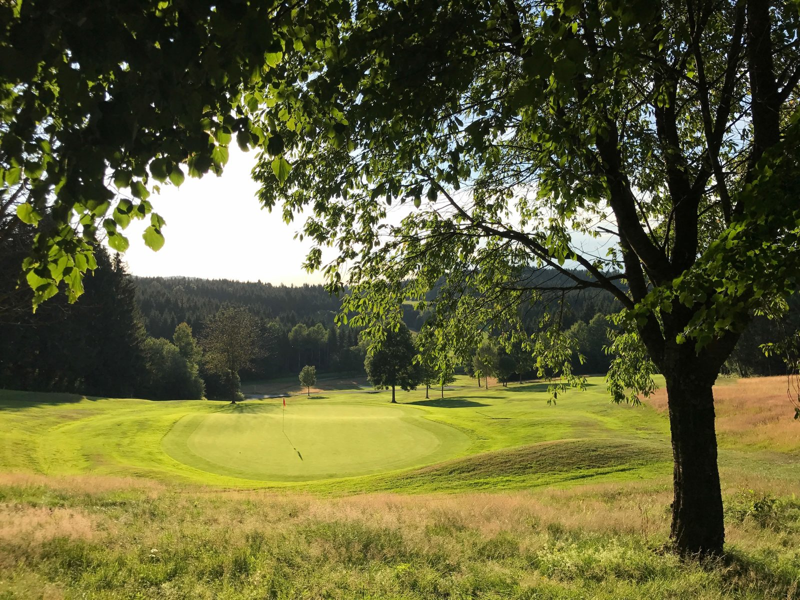The Golfpark Böhmerwald  - Bohemia Forest