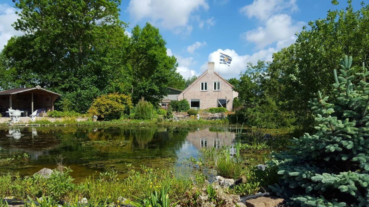 Top 11 natuurhuisjes in Zeeland