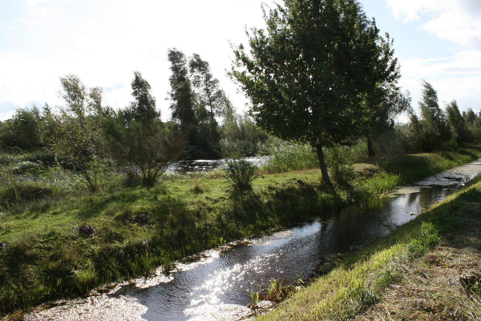 Abwechslungsreiche Landschaft am Hof von Salland