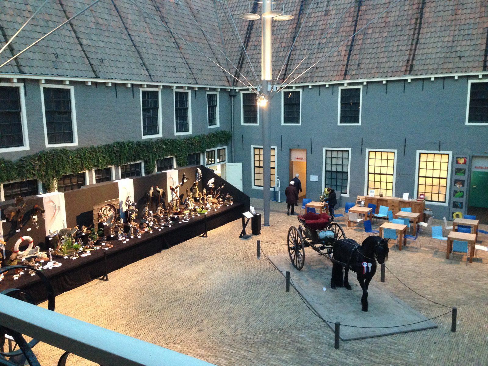 Freisisches Naturmuseum – Leeuwarden