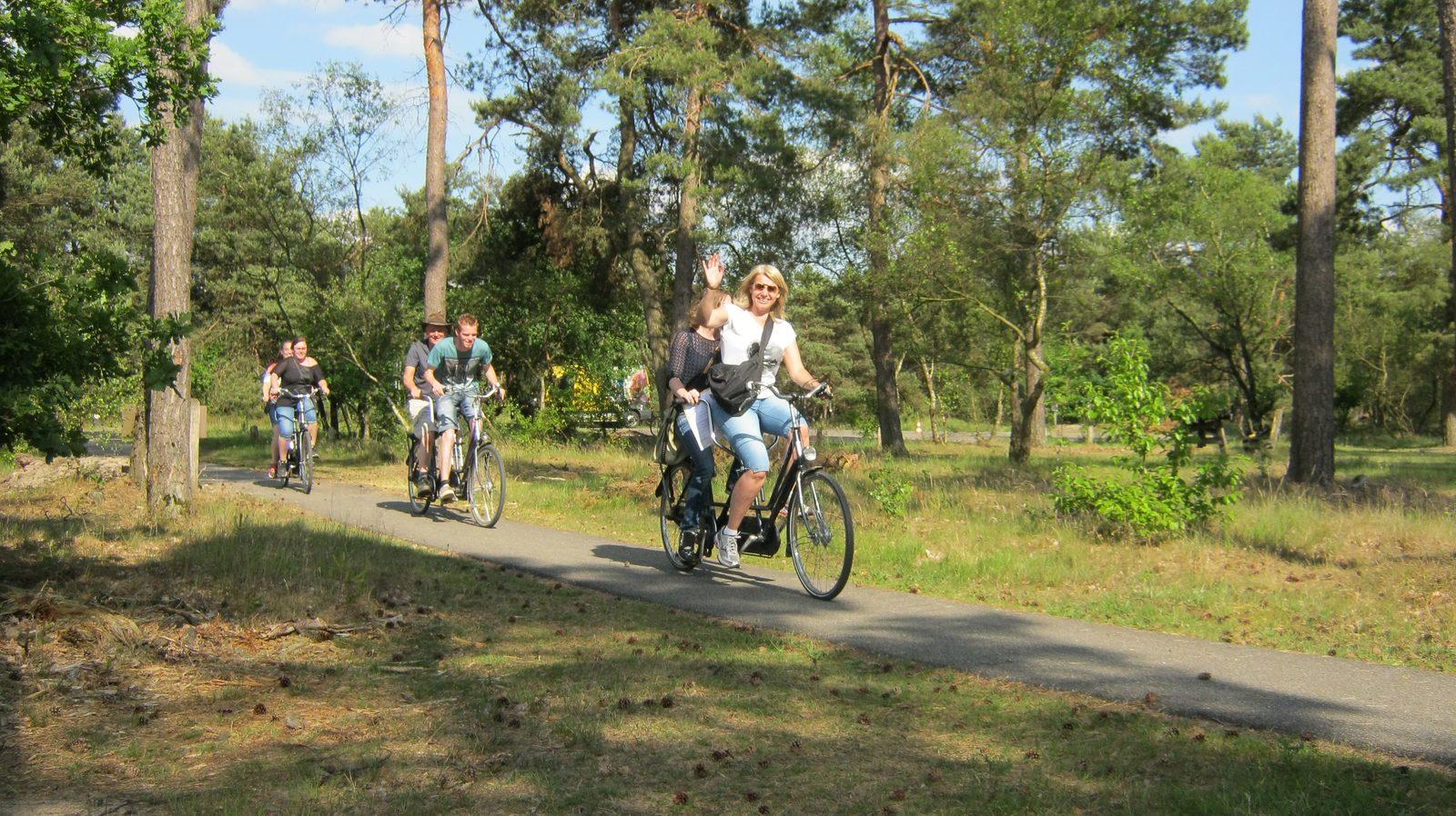 Veluwe op Recreatiepark De Boshoek
