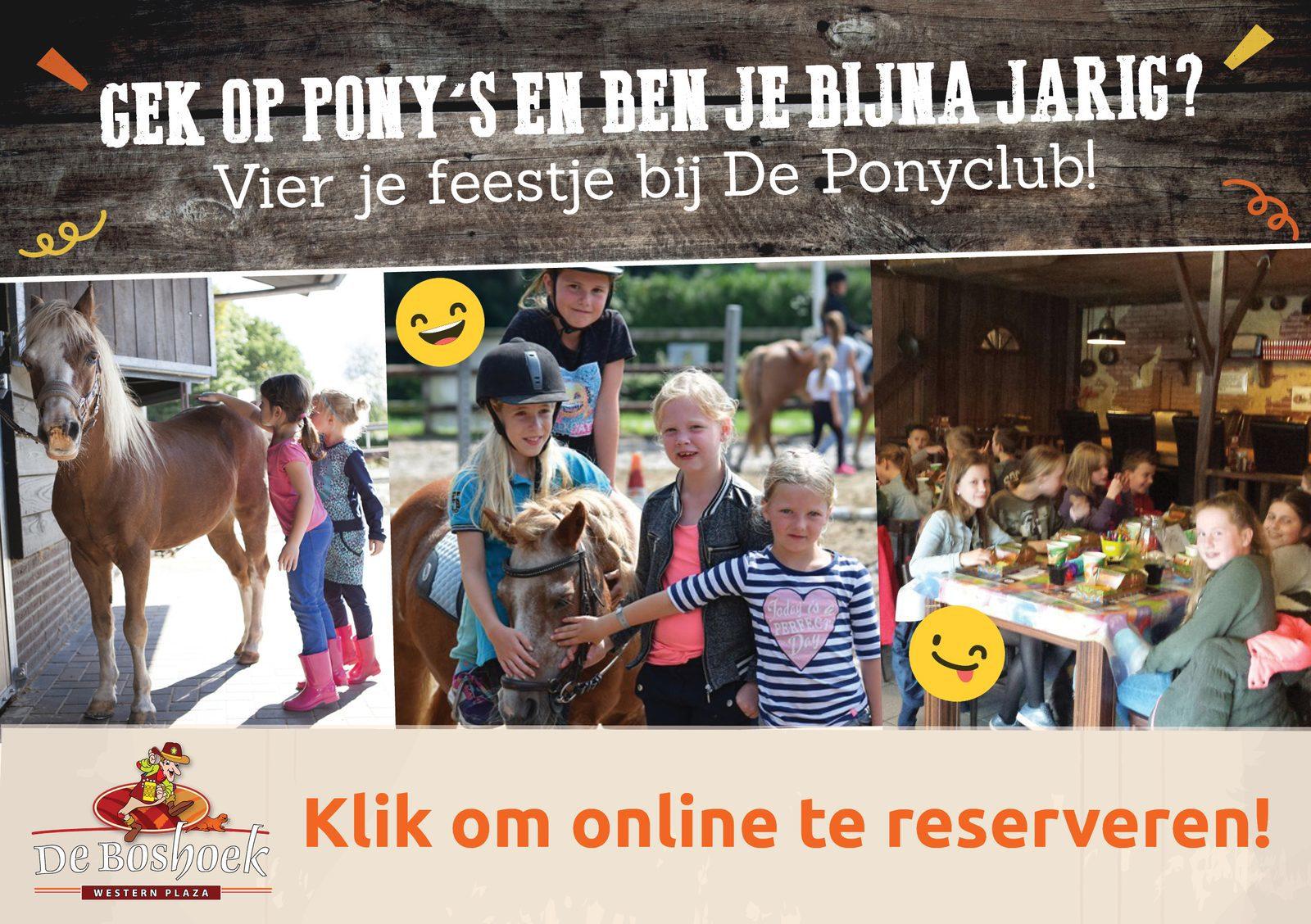 Vier ponykinderfeestje in Voorthuizen op Recreatiepark De Boshoek