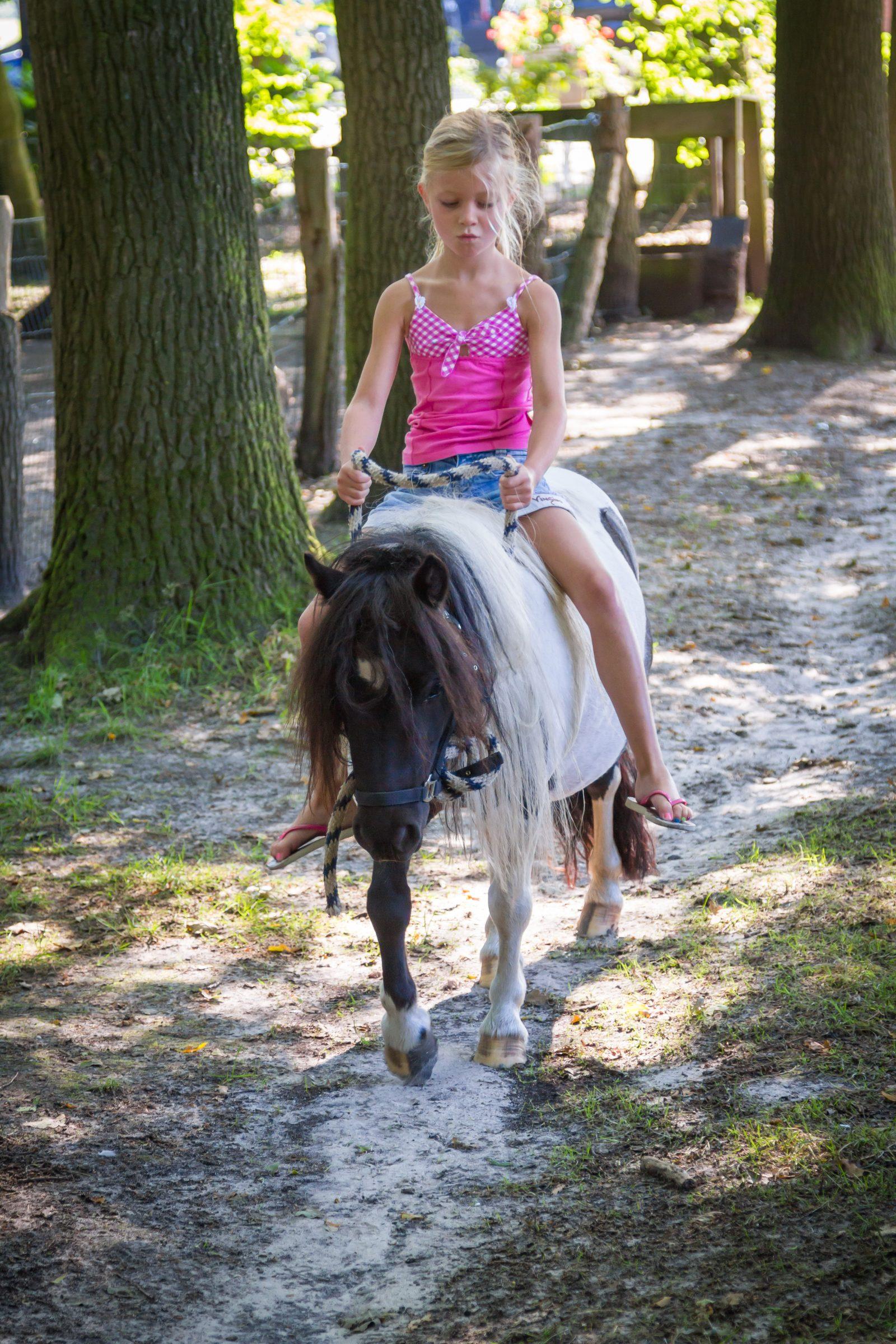 Ponyrijden