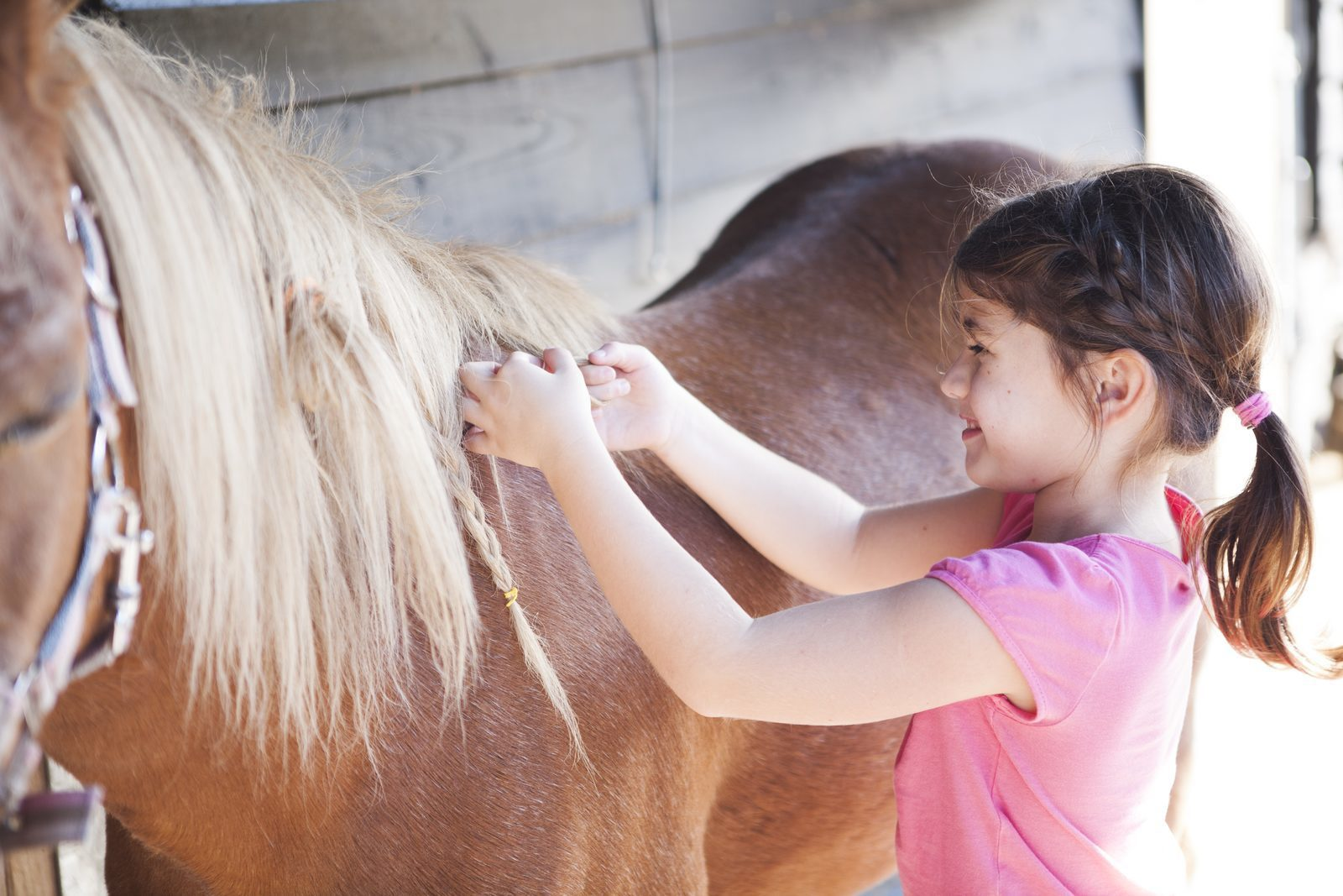 Ponyfeestje als kinderfeestje in Voorthuizen