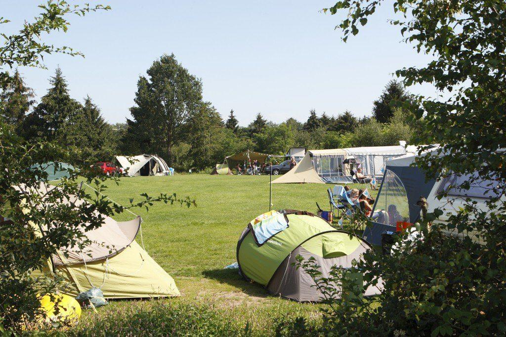 Fotoalbum Campinplätze