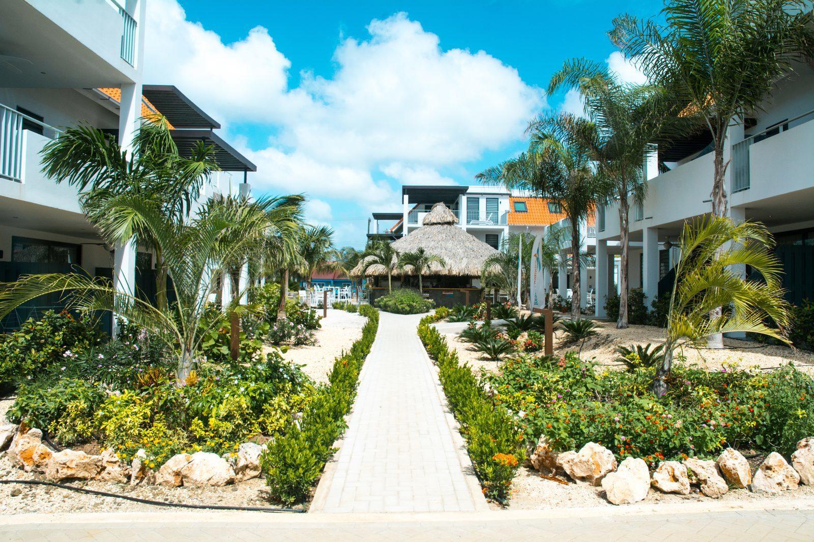 Bonaire promotion