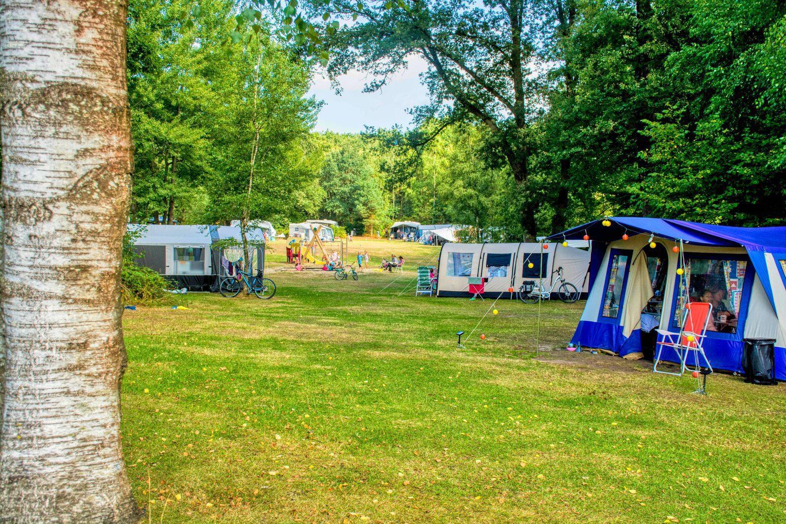 Feld zum Zelten Landgoed De Berenkuil