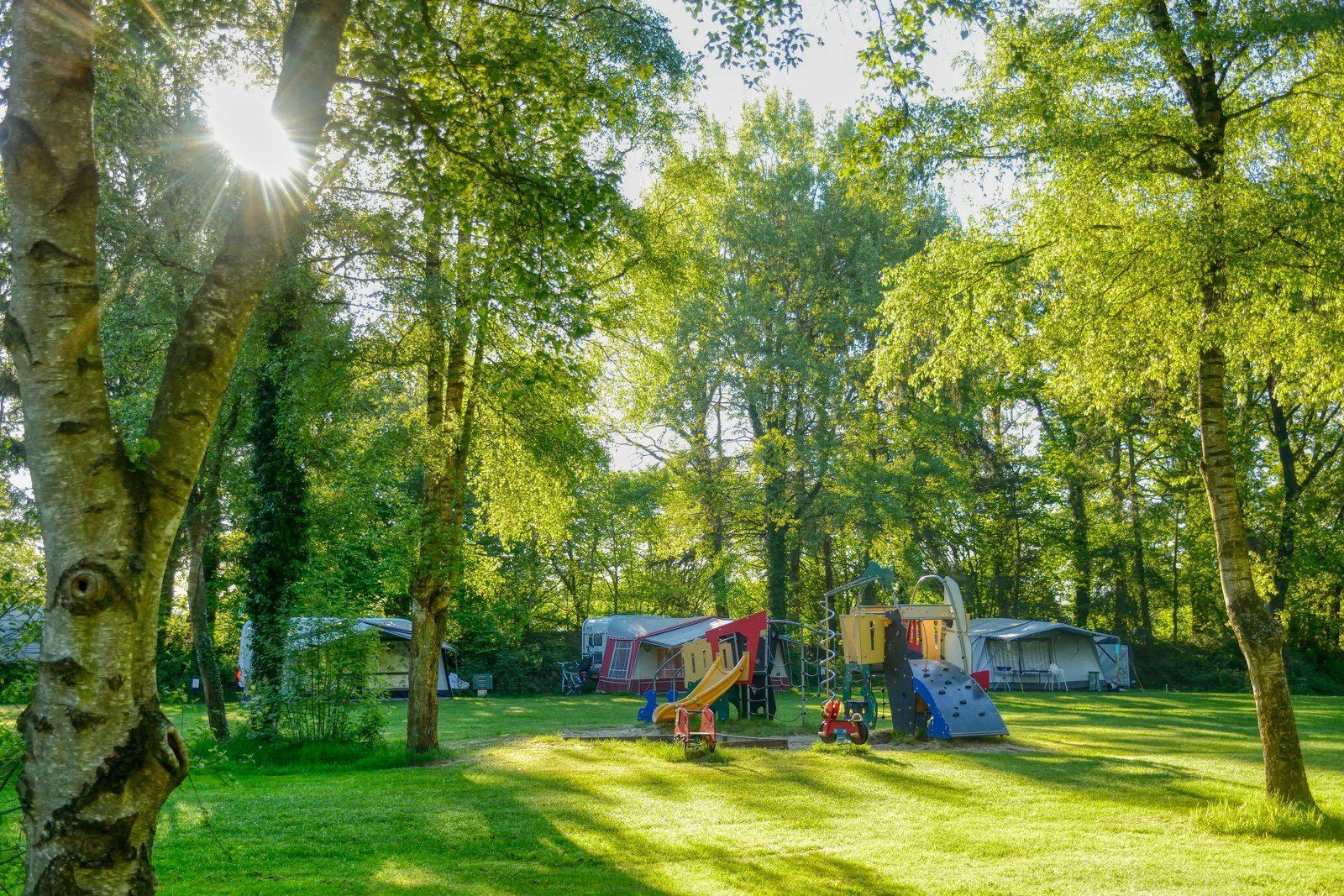 5 Sterren Camping In Drenthe De Berenkuil