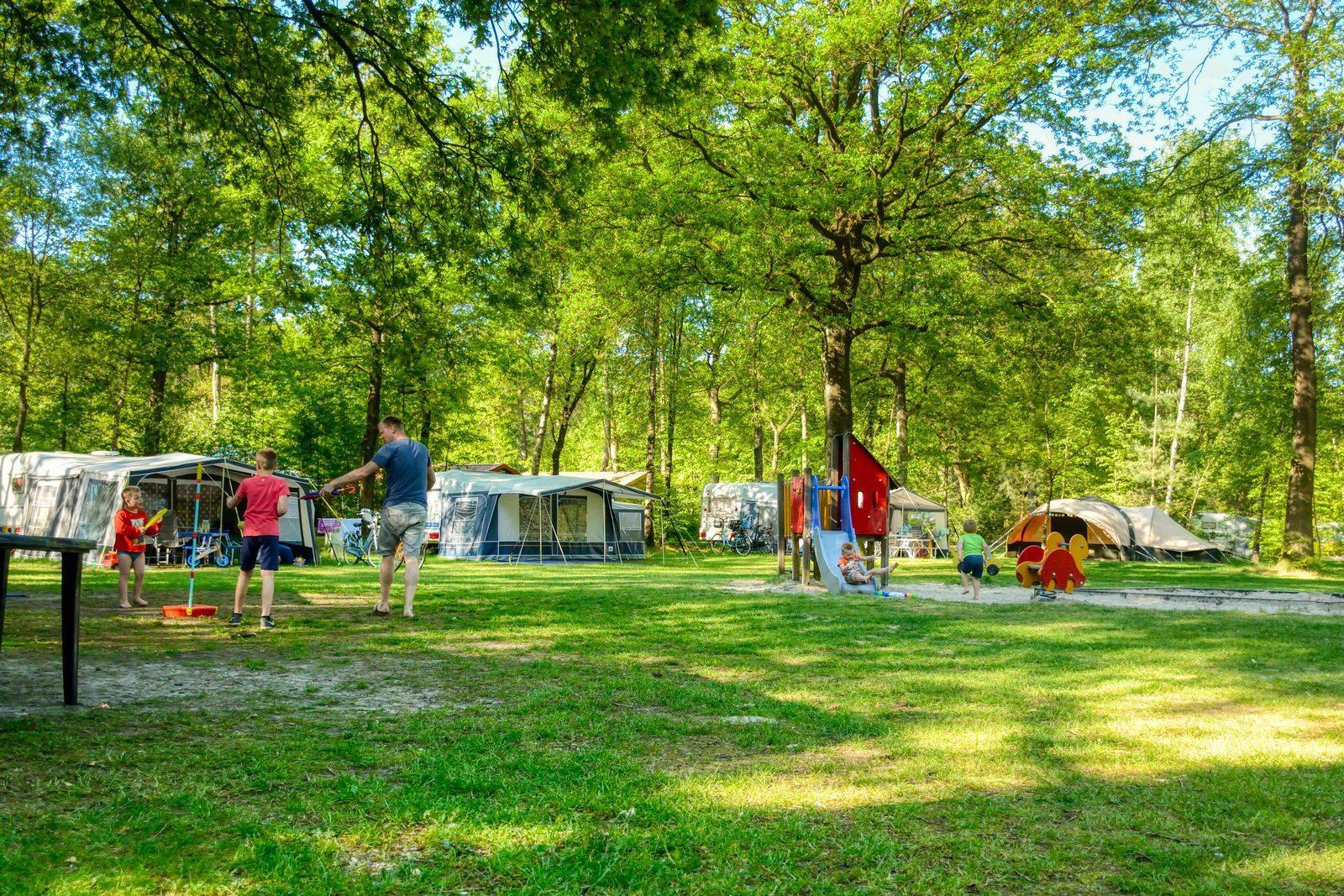 Campsite in Berenkuil | 5-star campsite in Drenthe