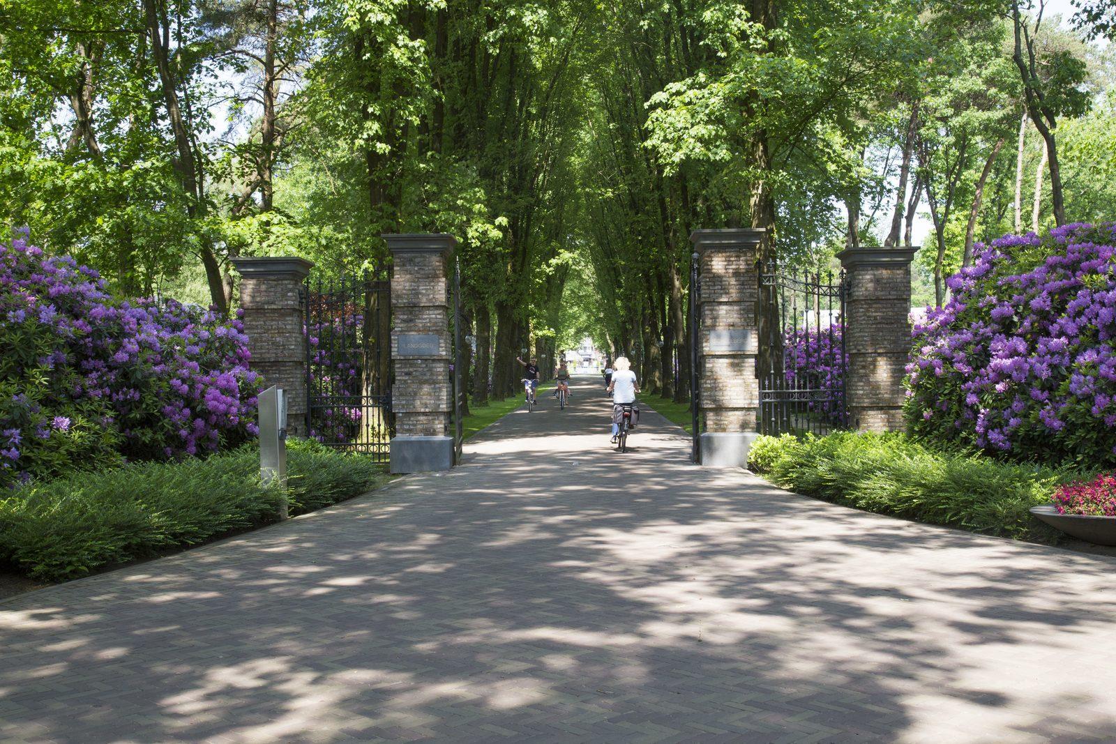Oprijlaan Landgoed de Scheleberg