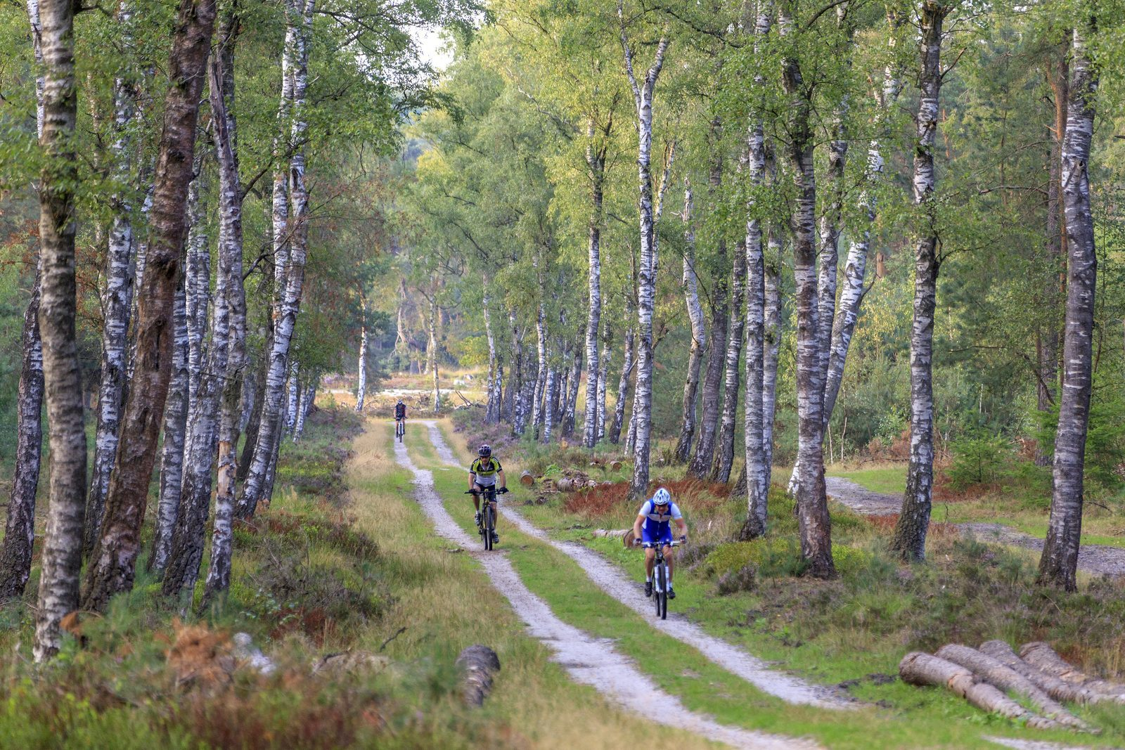 New all-terrain bike routes on the Veluwe