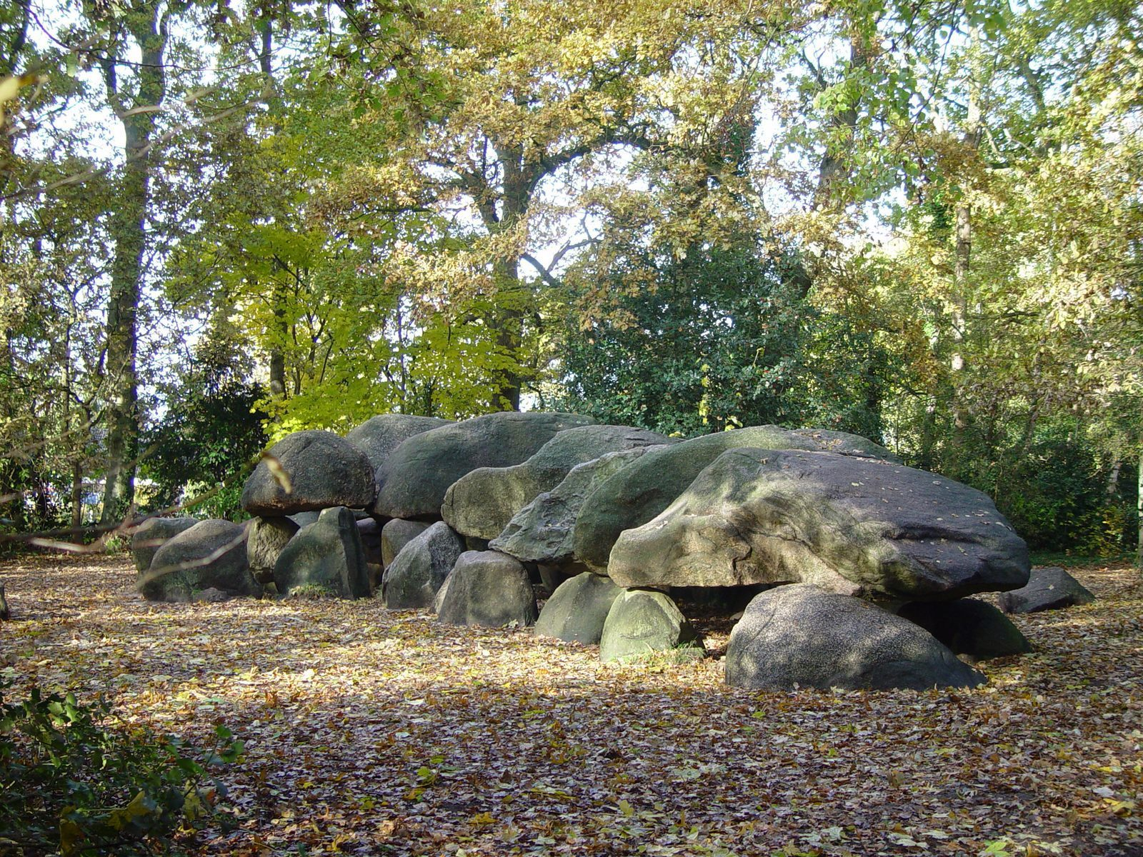 The Dolmen Center