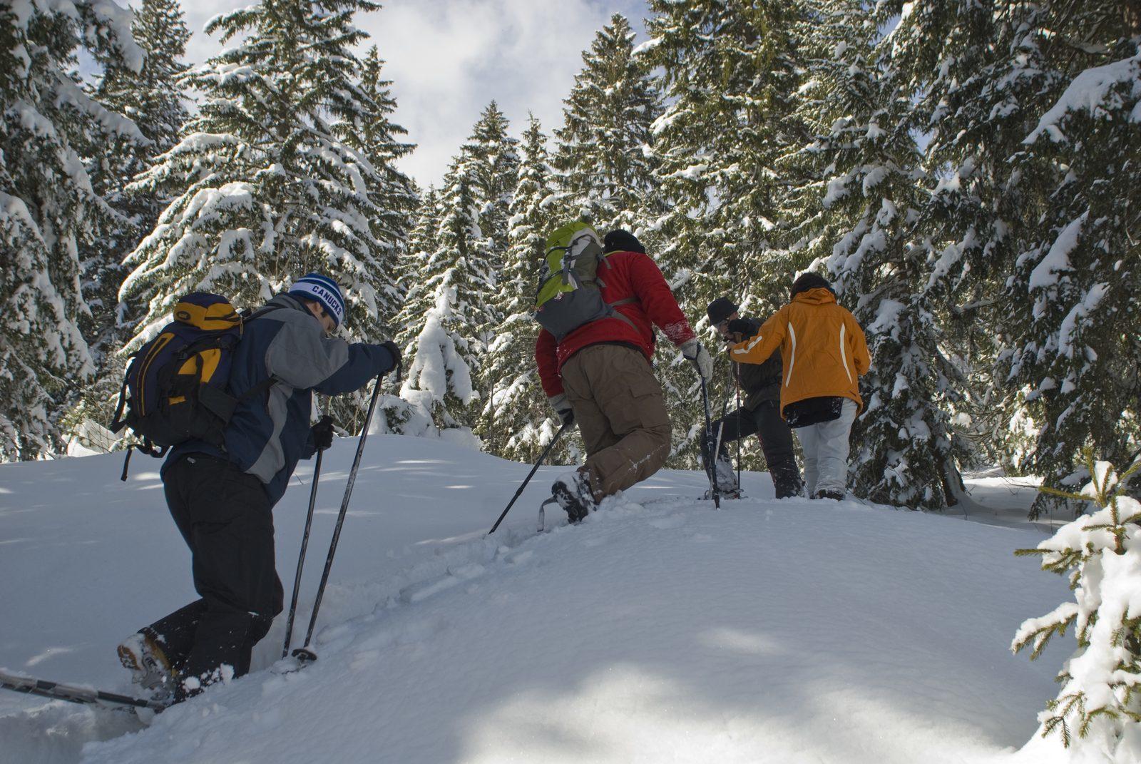 St. Gallen's most beautiful hiking trails
