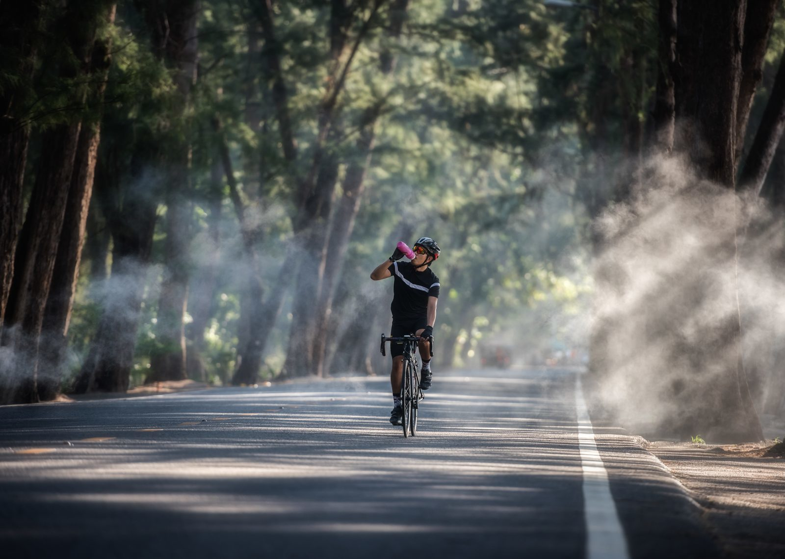 Le cyclisme dans la Veluwe