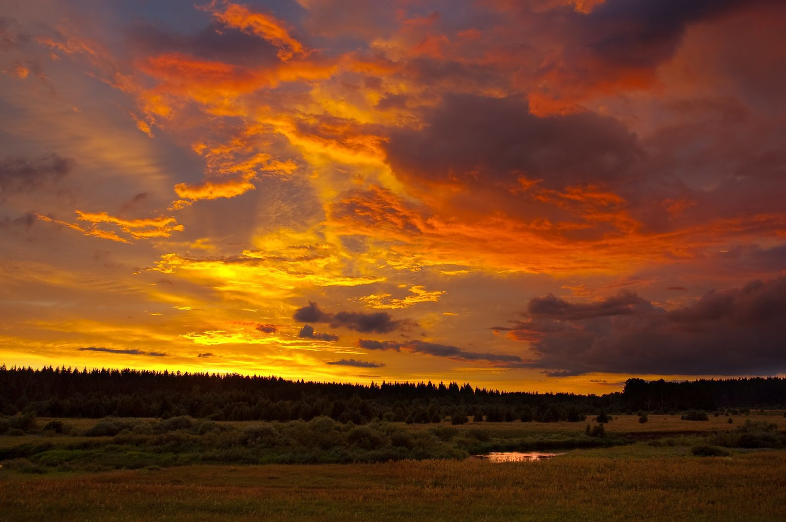 Zonsondergang op de Veluwe