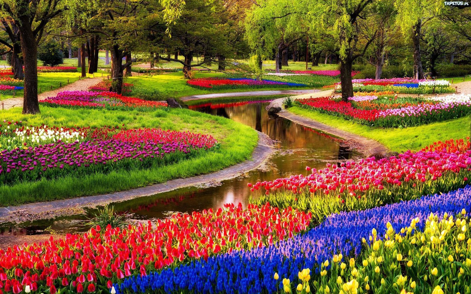 Garden of Europe Lisse The Netherlands