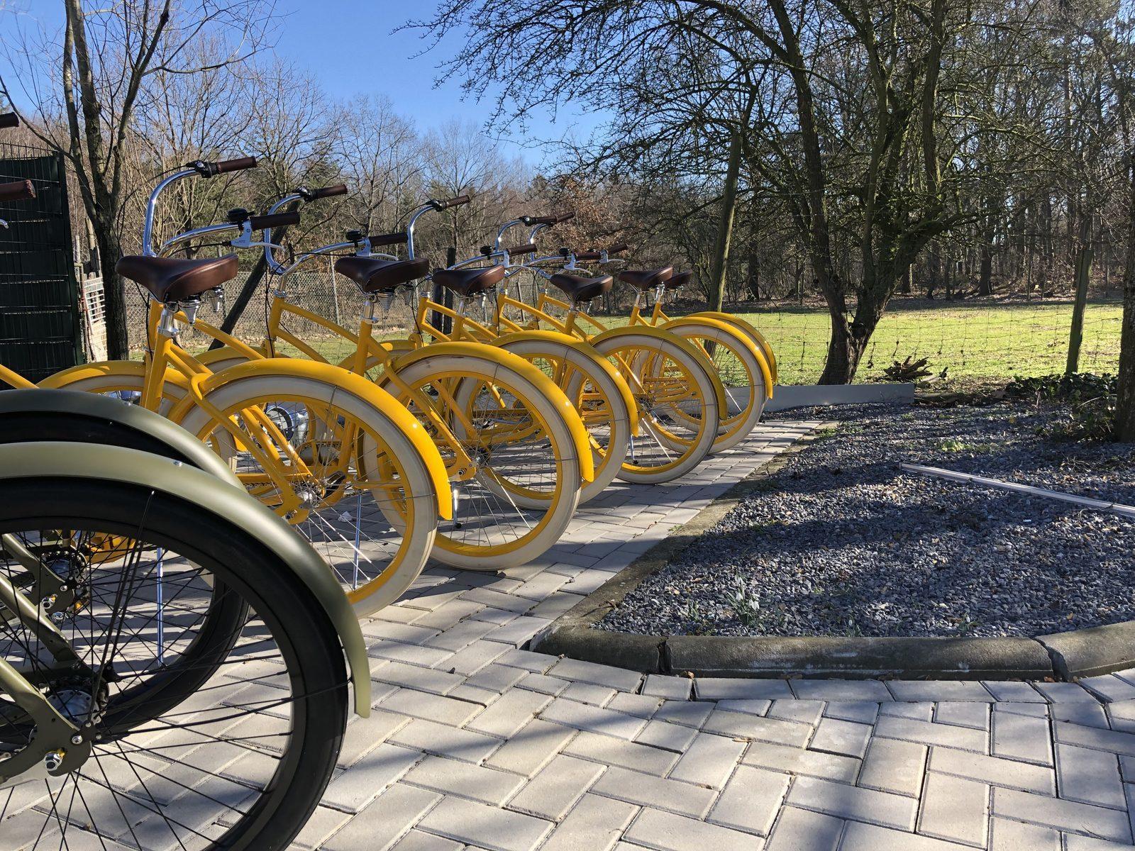 Fietsen op de yellow bikes door de Achterhoek