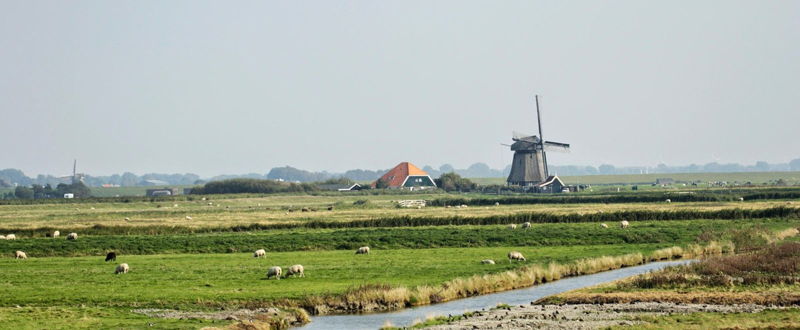 Groepsaccommodaties in Flevoland