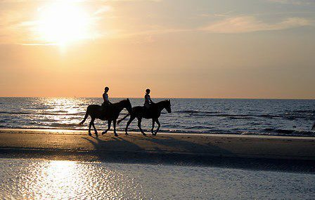 Horseback riding in Hardelot and environment