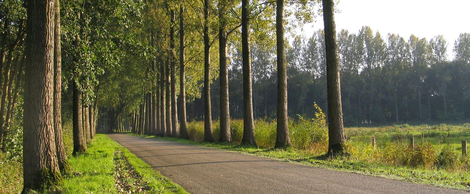 Provinz Noord-Brabant