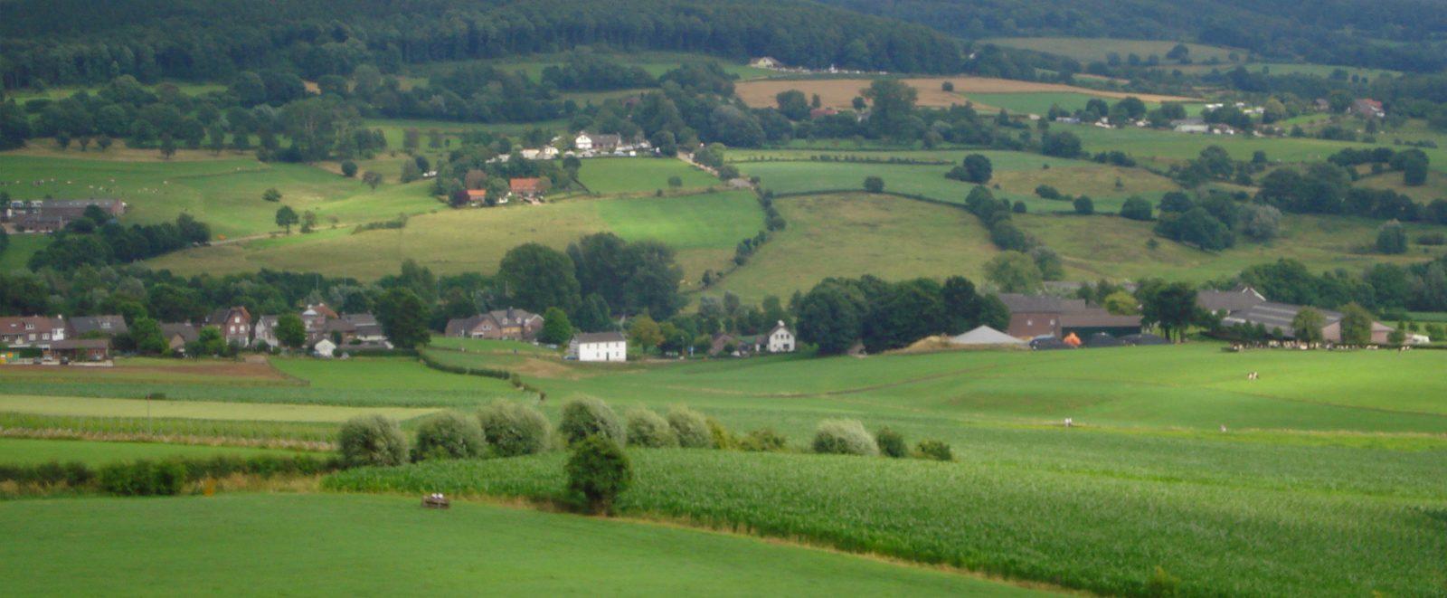 Provinz Limburg