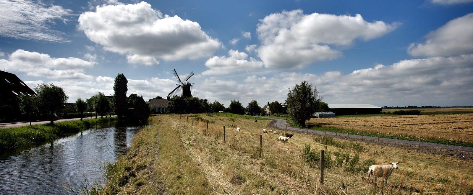 Provinz Zuid-Holland