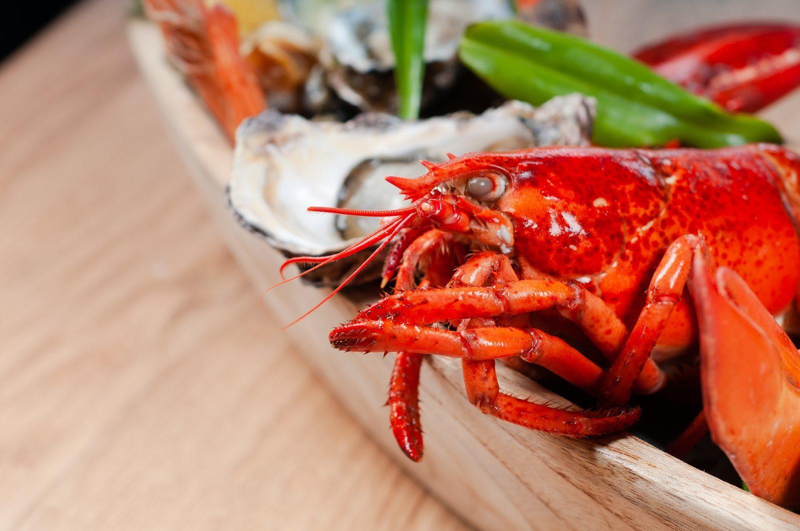 4x Culinair genieten tijdens een vakantie in Zeeland