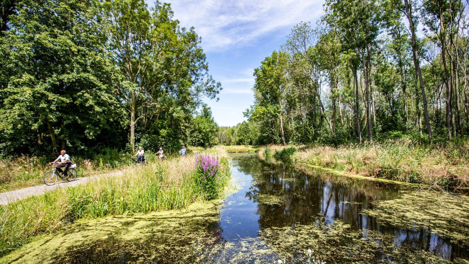 Parc de IJsselhoeve