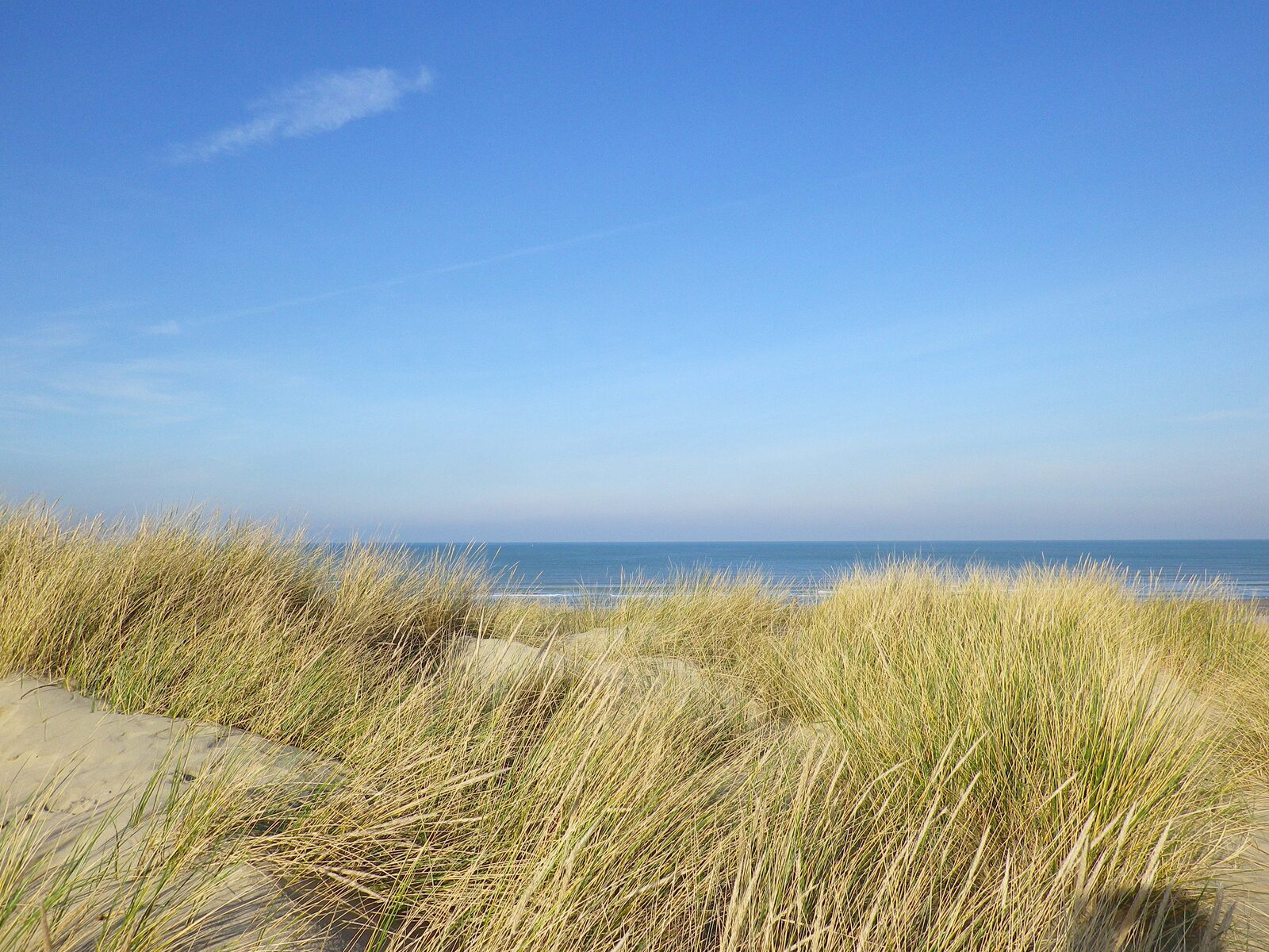Discover the beautiful Bray-Dunes