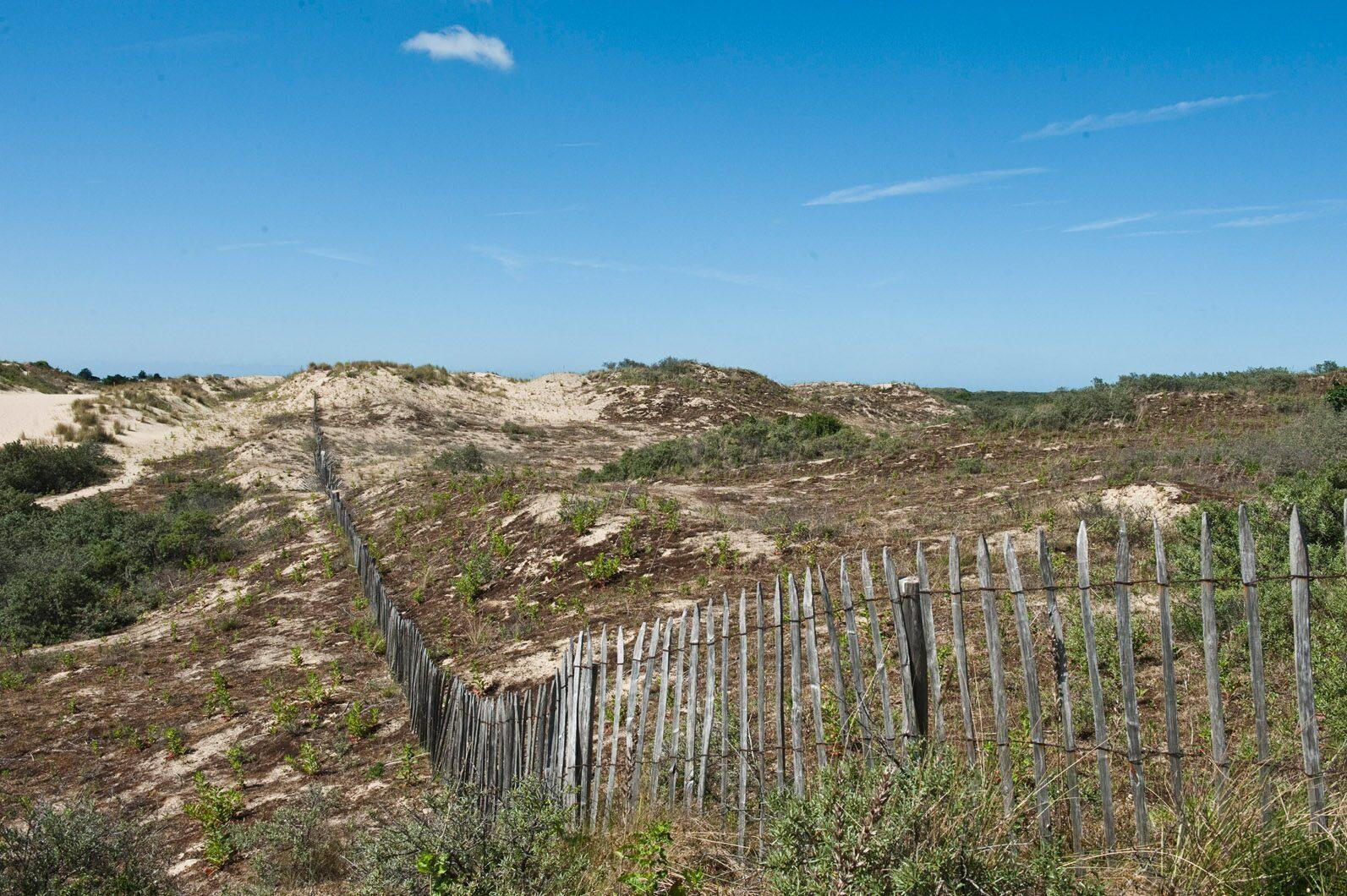 Topvakantie in Bray-Dunes