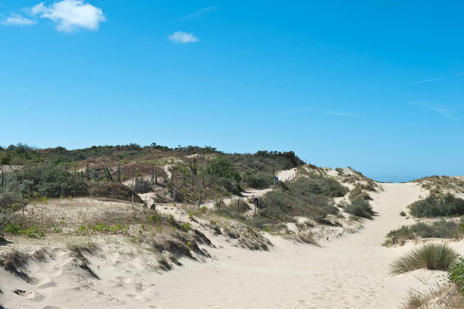 Duinen van Bray-Dunes