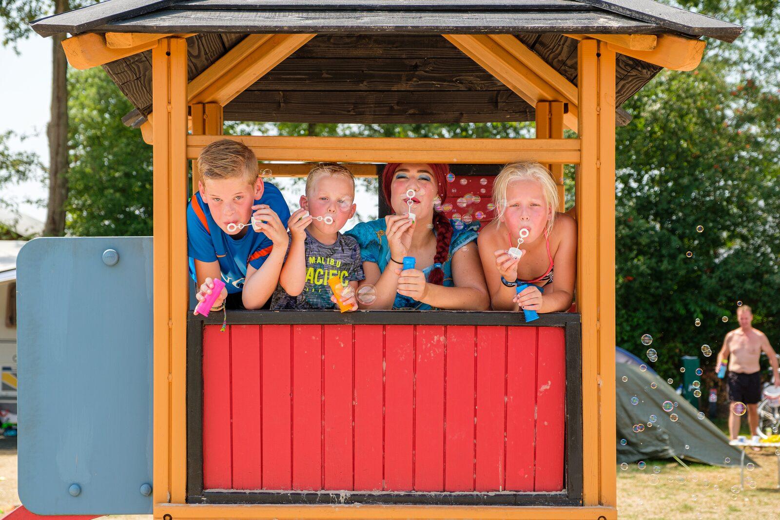 Fünf-Sterne-Zeltplatz in den Niederlanden