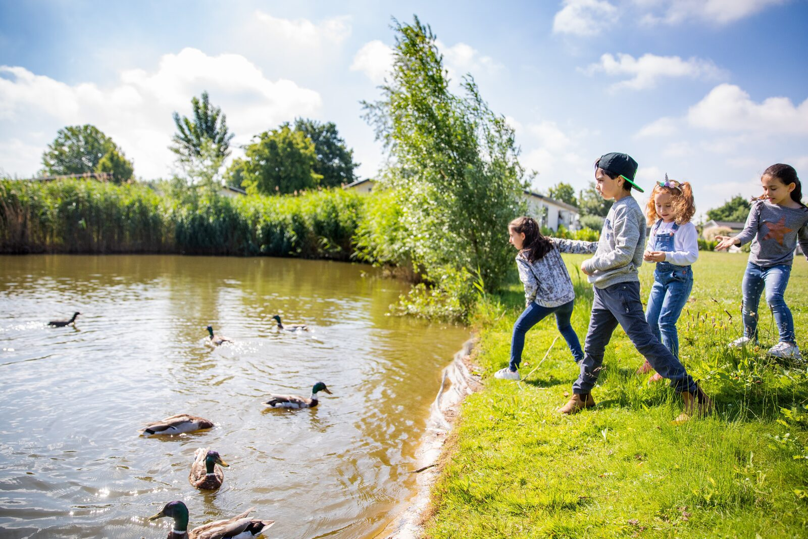 Campaigns Holiday Park 't Esmeer